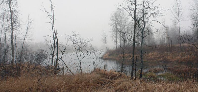 осень, туман , ноябрь Русский пейзаж )photo preview