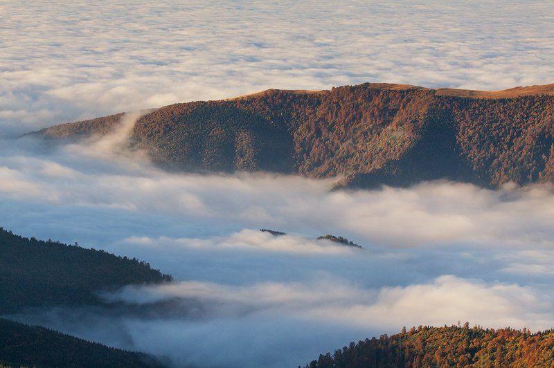 Romania, transalpina, fog, mountains, skyphoto preview