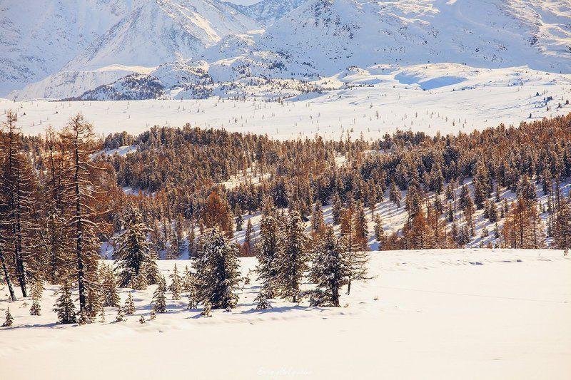 озеро, Киделю, Республика, Алтай, Улаганский, район, перевал, ноябрь, зима, снег Киделюphoto preview