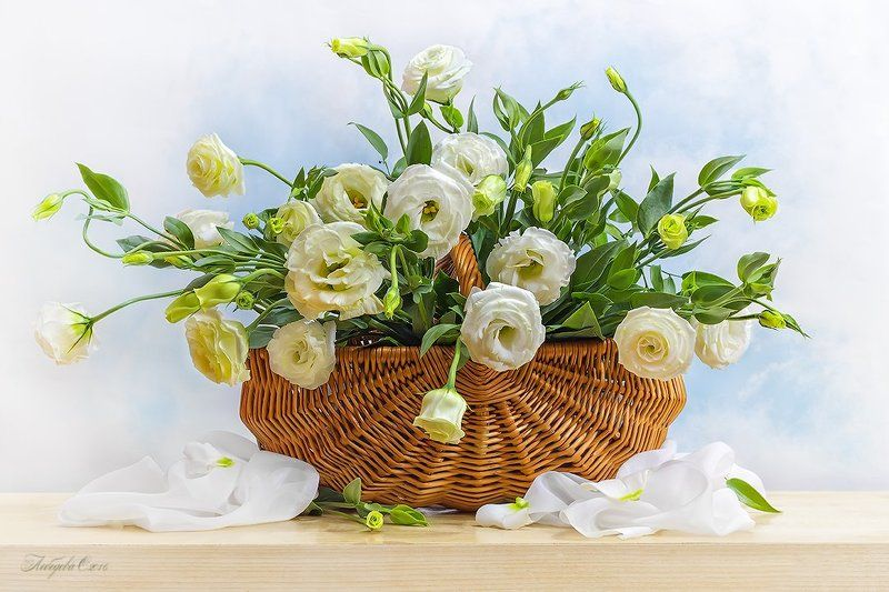 цветы,натюрморт,эустома,корзина,ваза,букет Эустомаphoto preview