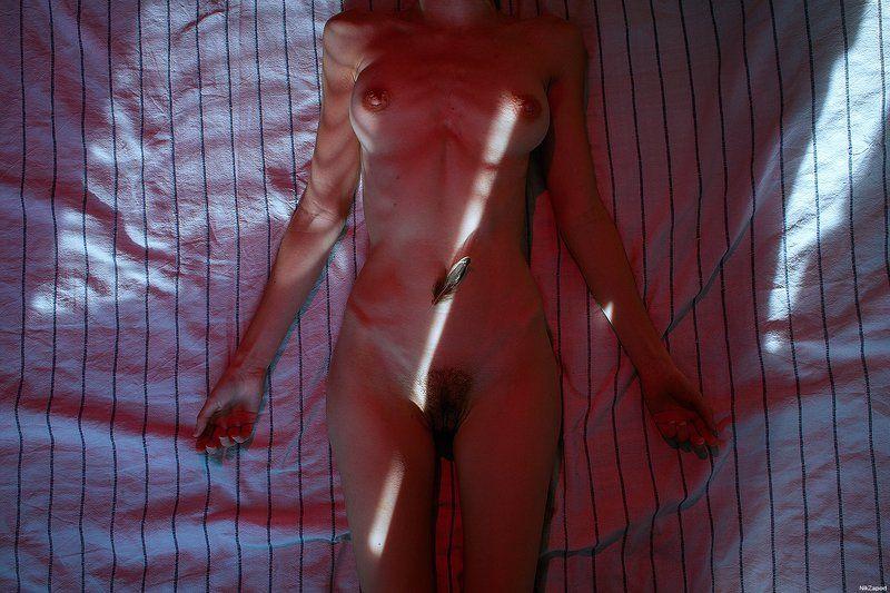 Taxidermy,nikzapod,ню,модель,цвет Taxidermy #77photo preview