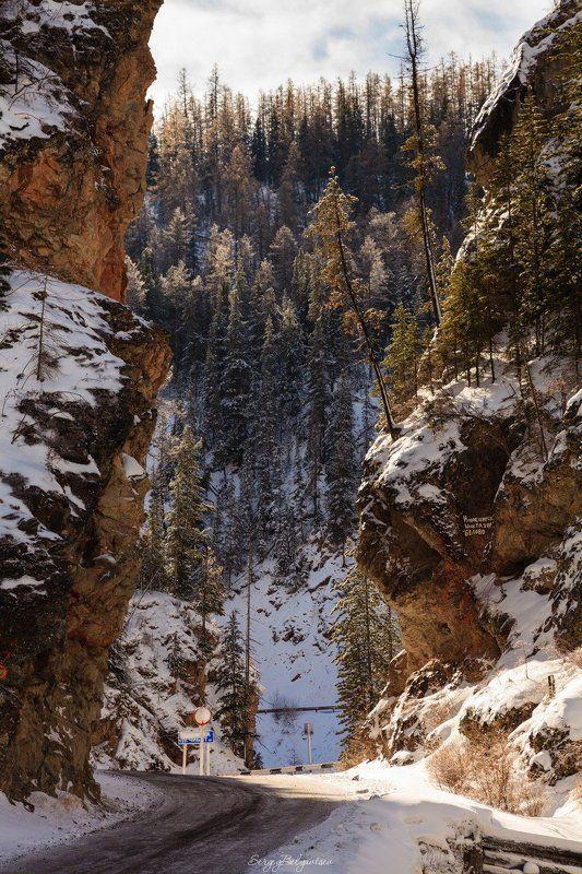 горный, алтай, красные, ворота, урочище, ущелье, каньон, чибитка, горы, лес, тайга, река, ручей Красные воротаphoto preview