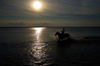 Фото навеянное творчеством Кузьмы Петрова-Водкина... или купание, условно красного, коня...