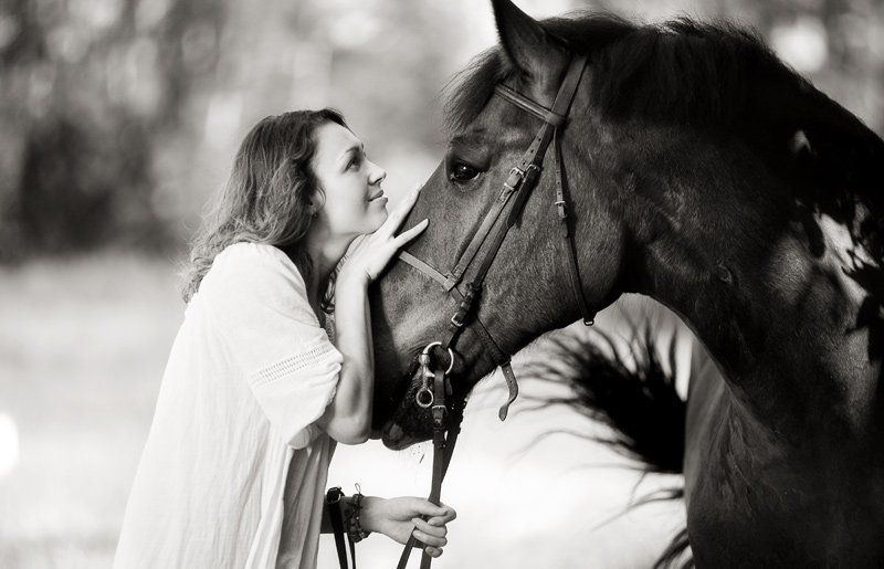 девушка, оля, лошадь, улица Тет-а-тетphoto preview