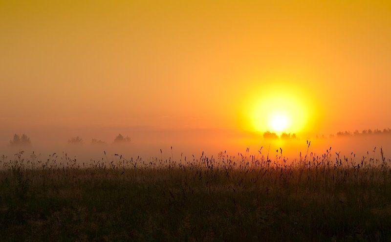 Восход под Ногинскомphoto preview
