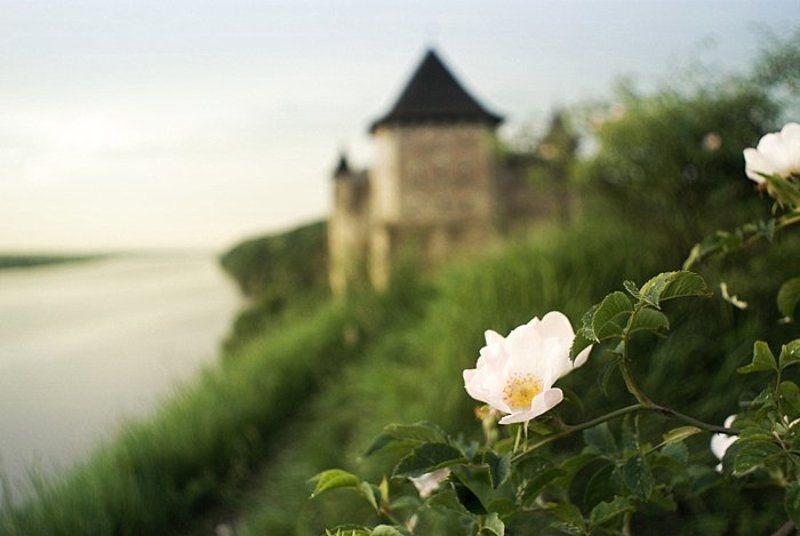 хотин, крепость, днестр Хотинphoto preview