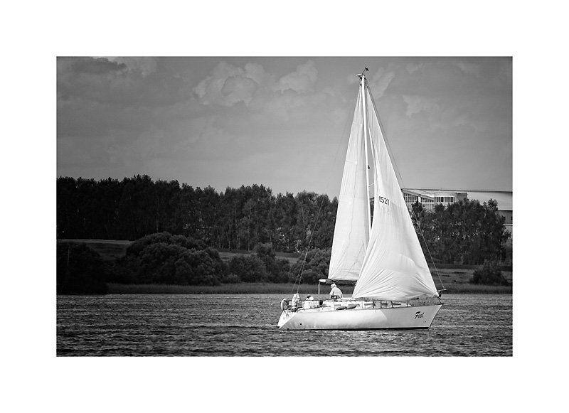 парус, яхта, лето, чб, москва река Белеет парус одинокий...photo preview