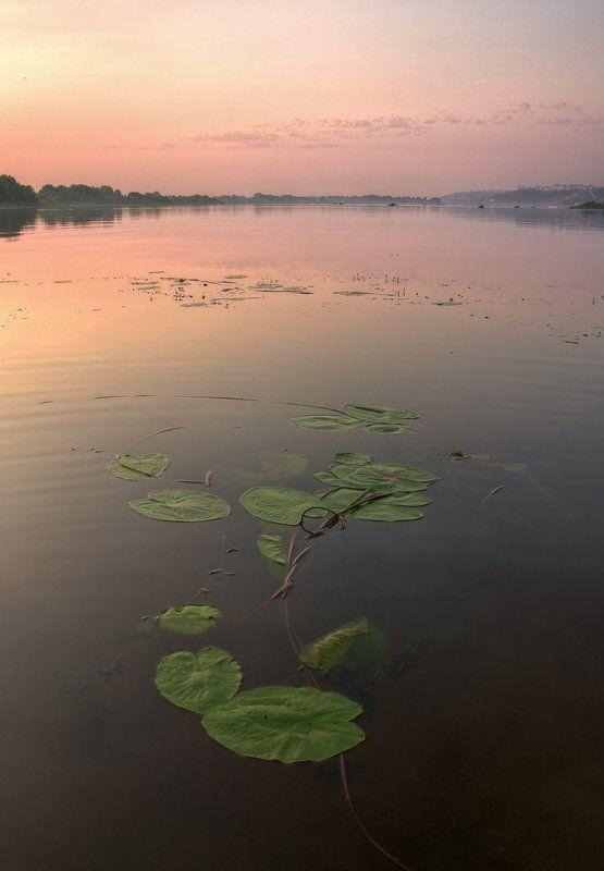 утро, рассвет, река, кувшинки теплое началоphoto preview