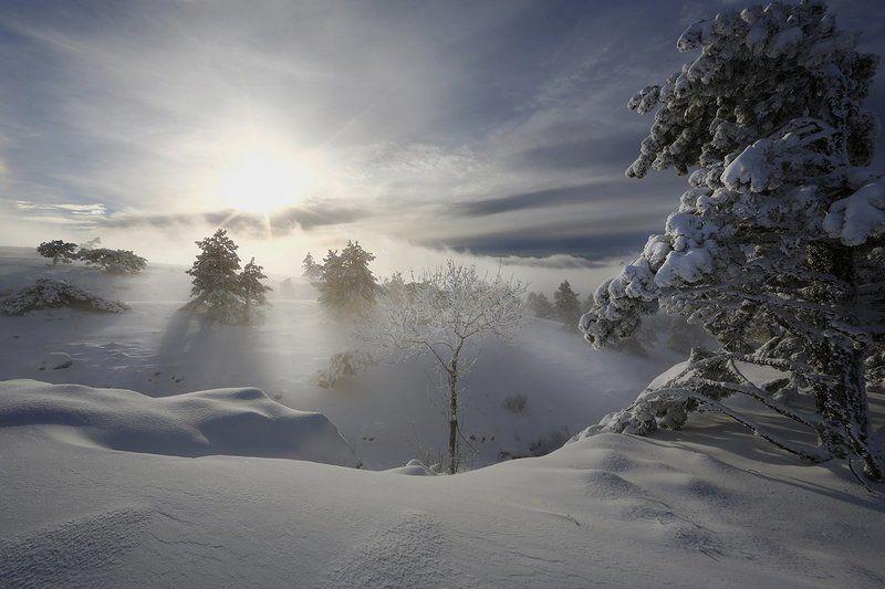 крым, зима, пейзаж, снег, деревья, небо, облака, солнце, Зимняя.photo preview