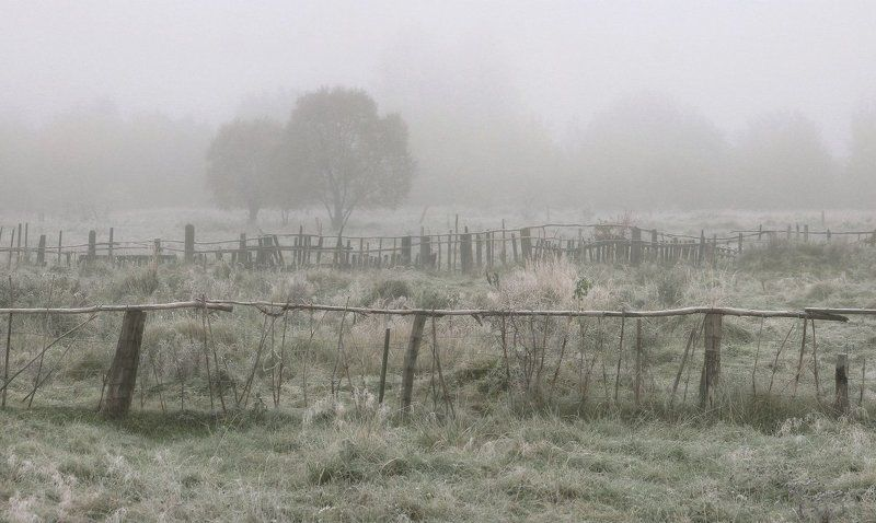 туман, дорога, заморозок, пруд, озеро, осень Одно туманно-морозное утроphoto preview
