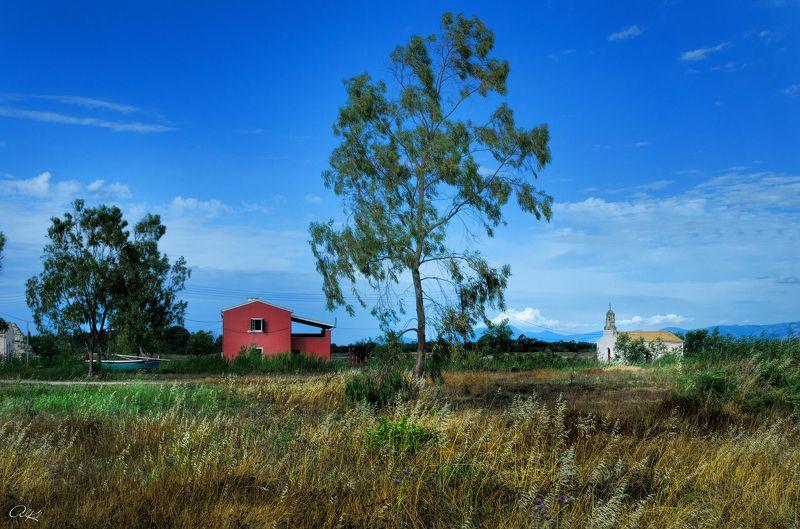 Построить дом, посадить дерево, ...photo preview