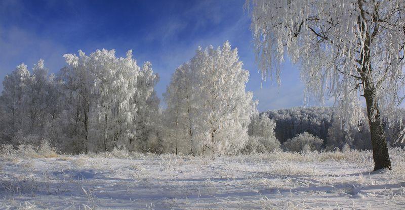 зима Русский пейзаж )photo preview