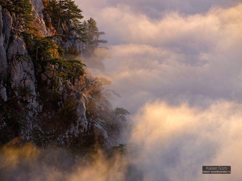 ай-петри, рассвет, туман, облака, сосны, скалы Остров в море туманаphoto preview