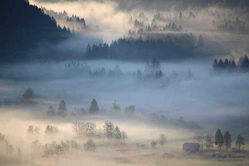 fog, foggy, slovenia, landscape, morning Once upon a time at foggy morningphoto preview