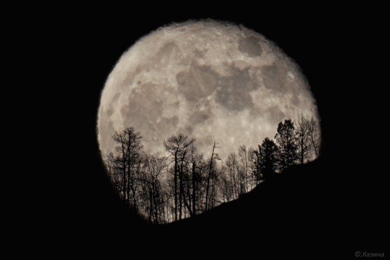 алтай, луна, полнолуние, ночь, ночное фото, moon, night, full moon Ночное светилоphoto preview