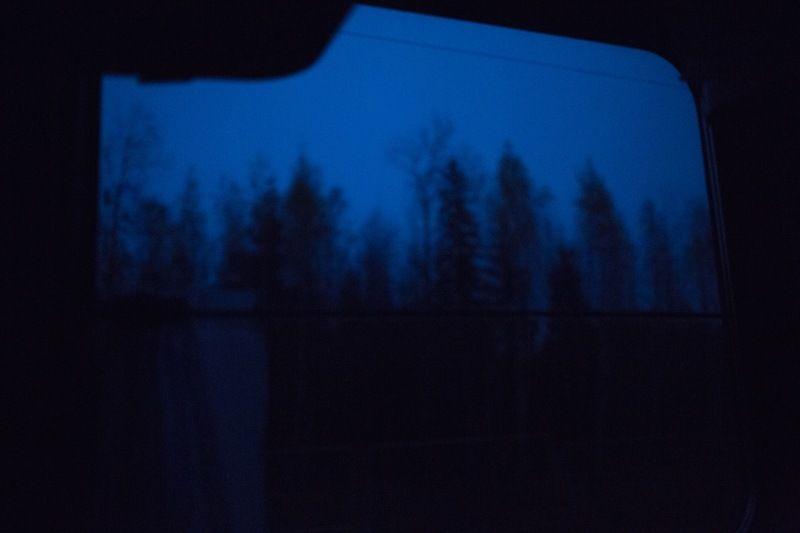 Романтика леса из едущего поездаphoto preview