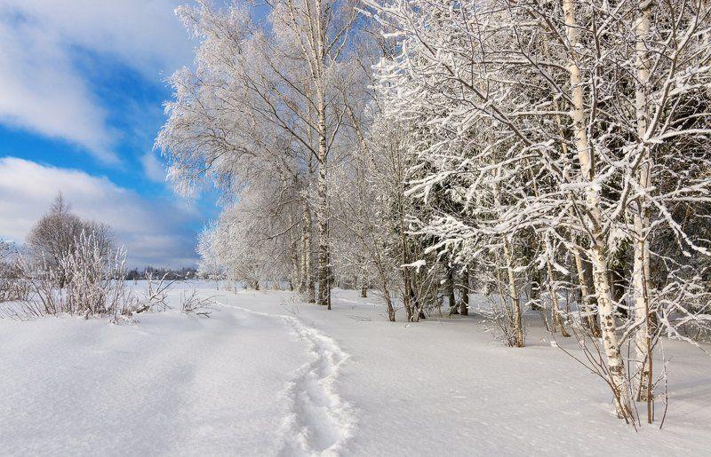 Открыточная зимаphoto preview