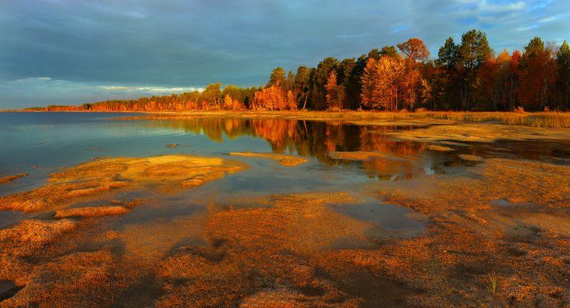 Медное озероphoto preview