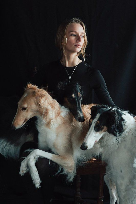 Русская борзая собака фото с человеком