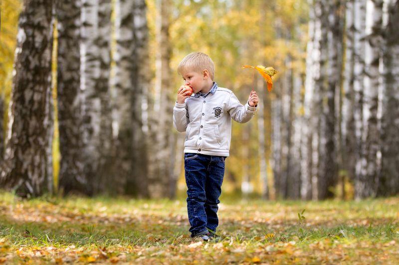 осень, дети, лес Осеннее настроениеphoto preview