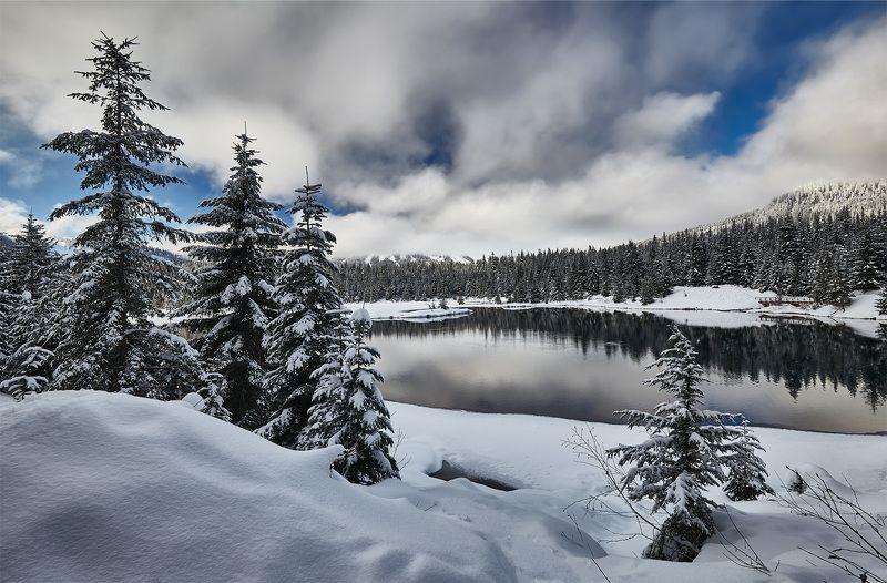 зима, озеро, отражение, снег, белый, пейзаж, лес, деревья Gold Greek Pondphoto preview