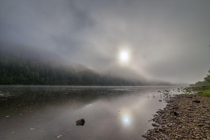 туман, река, лето Утренний туманphoto preview