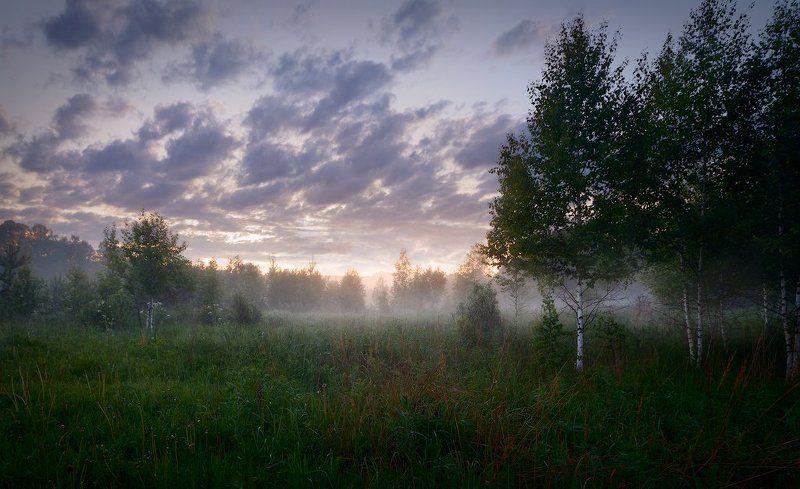 Туманным вечеромphoto preview