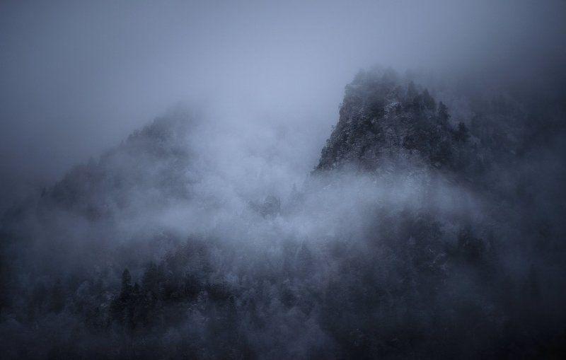туман, горы, деревья, архыз, софийская долина, кавказ, кчр Пробуждение духов горphoto preview