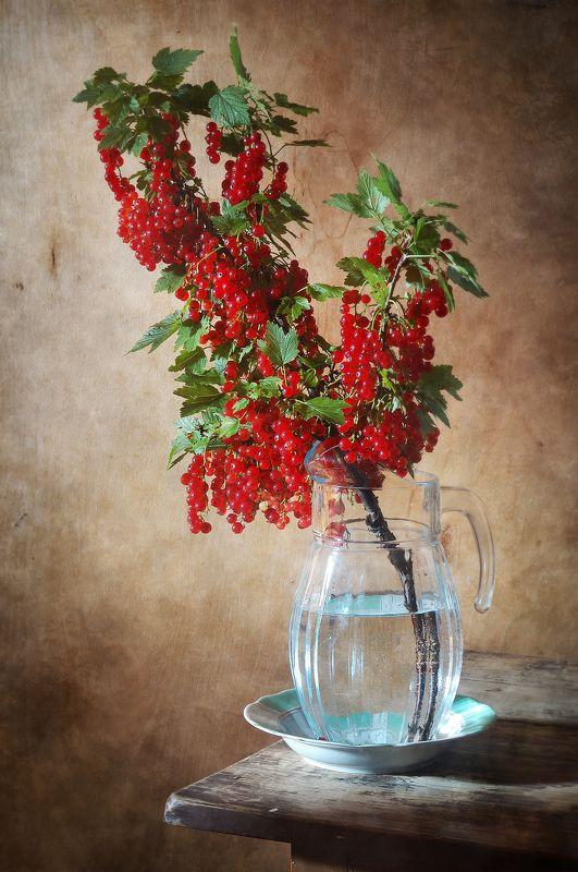 Классический, натюрморт, большой, ветка, красный, смородина, свежиий, ярко-красный, ягододы, стеклянный, кувшин, коричневый, летний, дом Красная смородинаphoto preview