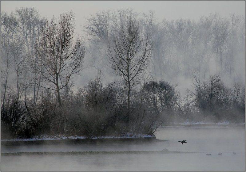 иртыш,зима, утки Утиный островphoto preview