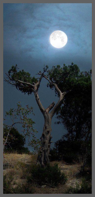 мистика, горы, крым мистика крымских горphoto preview