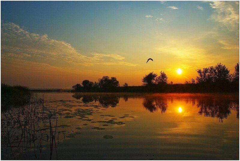 утро, рассвет Рано утром..photo preview