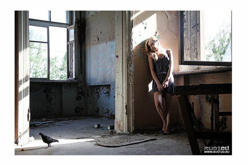 rust2d, sasha, silver Asylumphoto preview