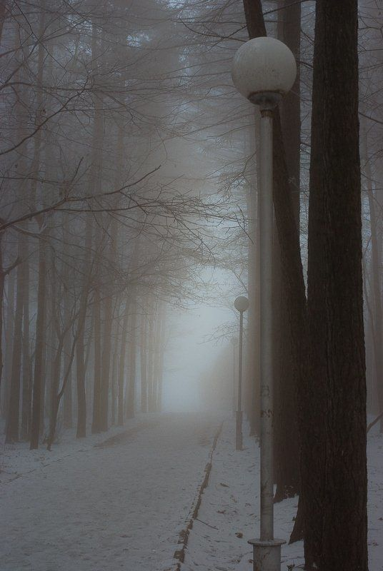 мороз, туман, зима Воздухphoto preview