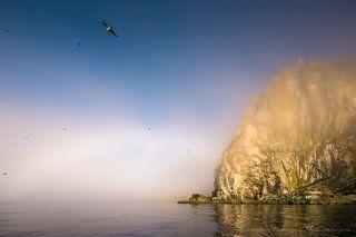 Остров Матыкиль