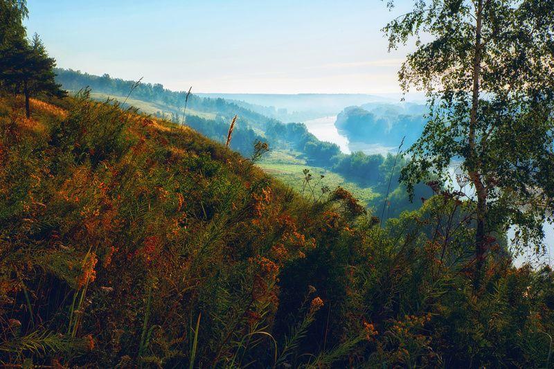 река, туман, утро, лес, трава, деревья, пейзаж, природа Скоро осеньphoto preview