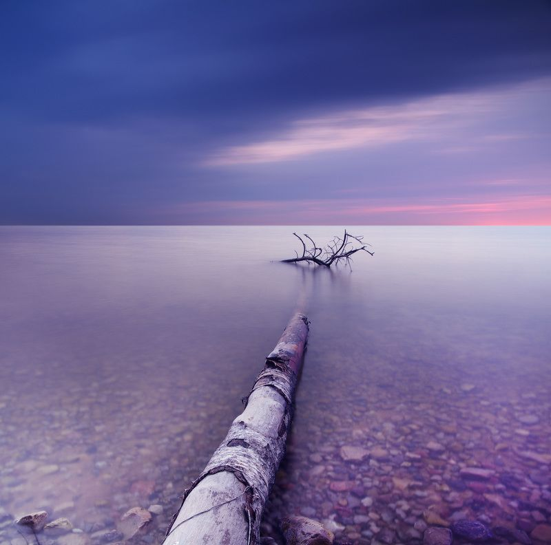 long exposure, water, tree, sea *photo preview