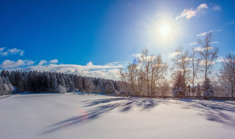 sun ,forest,tree,trees,snow,shadows,winter,sky,blue,clouds,frosty,cold,january,landscape,nature,germany,bayern Snow with blue sky..photo preview