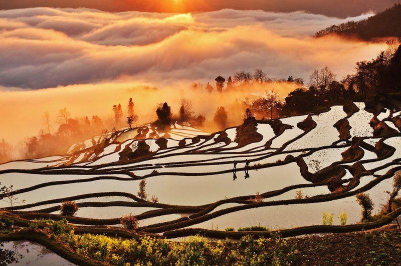 yuanyang , china Morning lightphoto preview