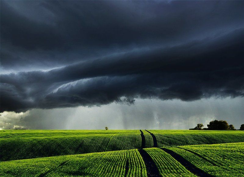 Lithuania, field, grass, storm, clouds *photo preview