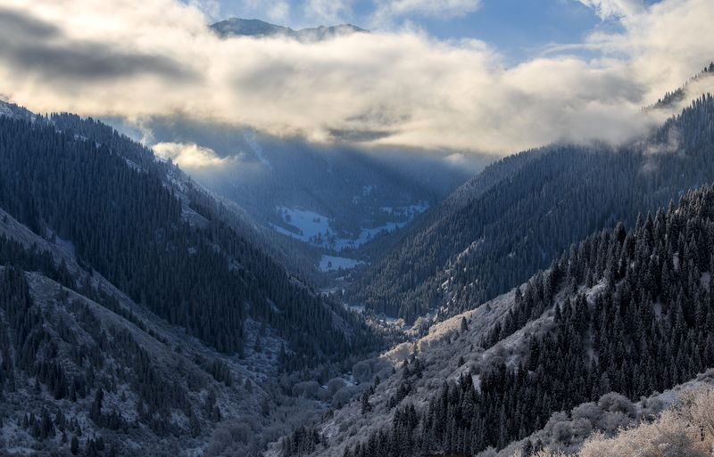 горы, Алматы, зима, Казахстан Зимняя сказкаphoto preview