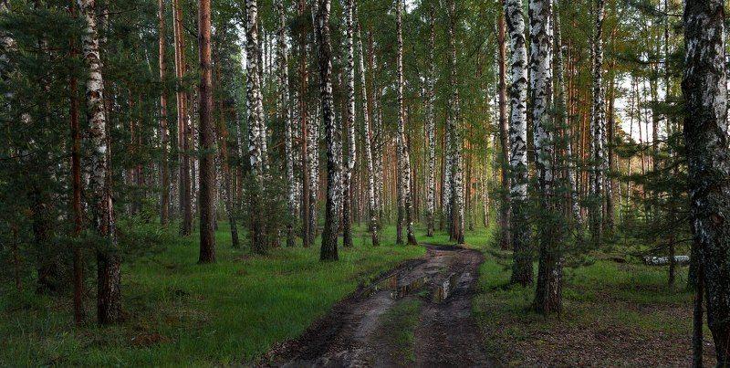 Тверь, Тверская область photo preview