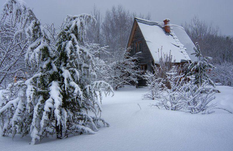 Зимняя спячкаphoto preview
