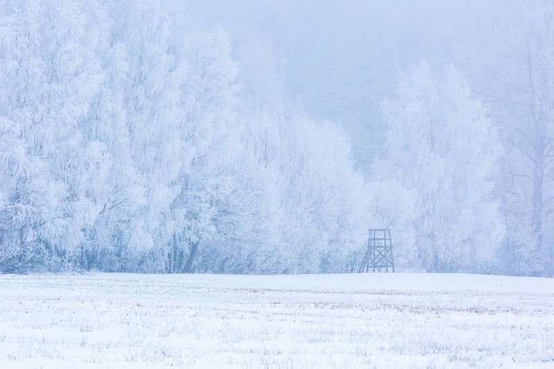 landscape, poland, winter, hoarfrost Raised hidephoto preview