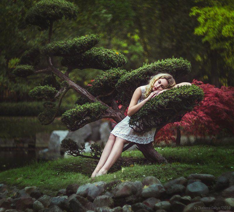 девушка, дерево, сон, портрет, подушка ...photo preview