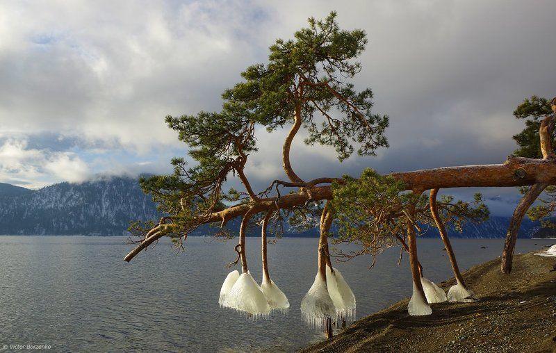 Алтай, Телецкое озеро, Яйлю Про зимнюю обувь :)photo preview