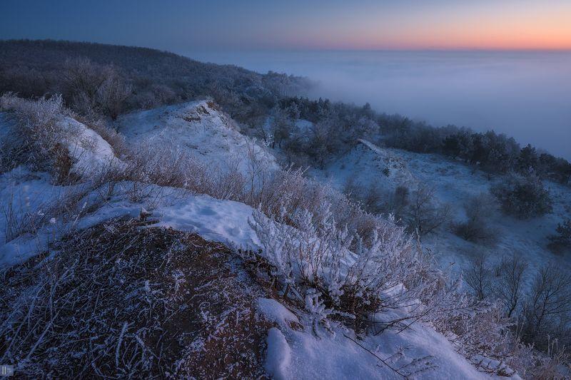 зима, снег, иней, туман, закат, кусты, деревья, сосны, овраги, холмы, берег, река Мороз. Внутрення тишинаphoto preview