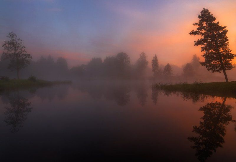 morning, sunrise, mist, lake, reflections, summer, fog, trees, water, clouds, colours On the other shorephoto preview