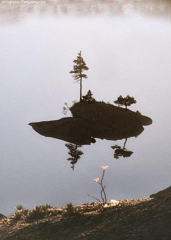 красноярский край, западные саяны, национальный парк  ергаки, озеро, островок, кустик. Кустикphoto preview