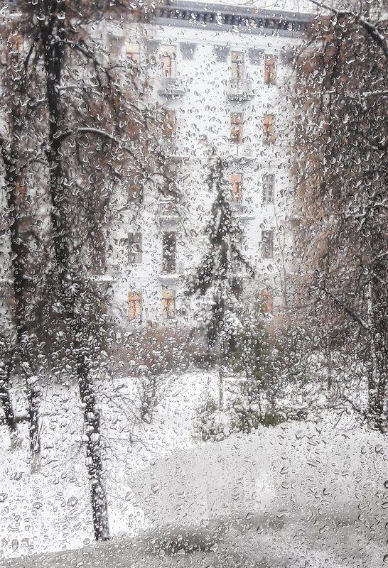 зима, непогода ***photo preview